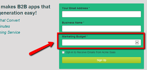 Asking someones budget on a lead form is a good way to improve the quality of your leads.