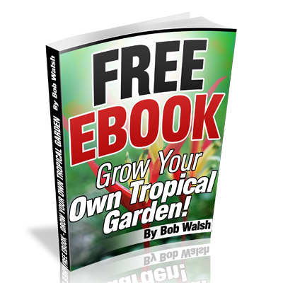 email-subscriber-ebook